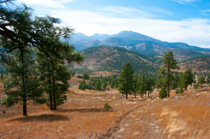 Robinson Crater Hike