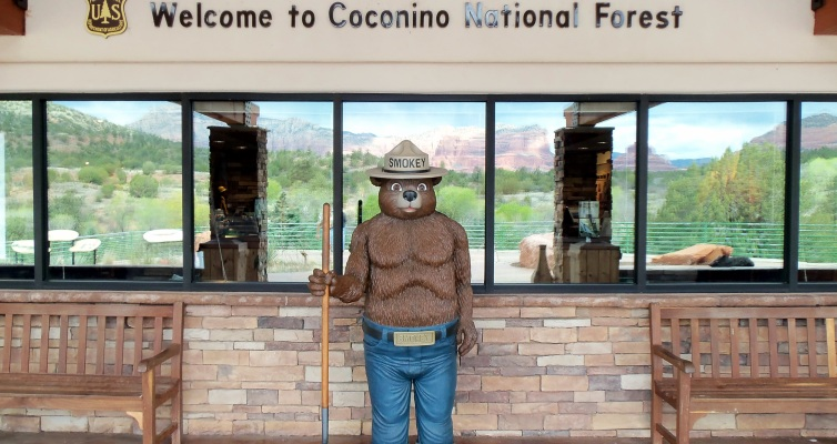Smokey Bear, Red Rock Ranger District, Sedona, Arizona