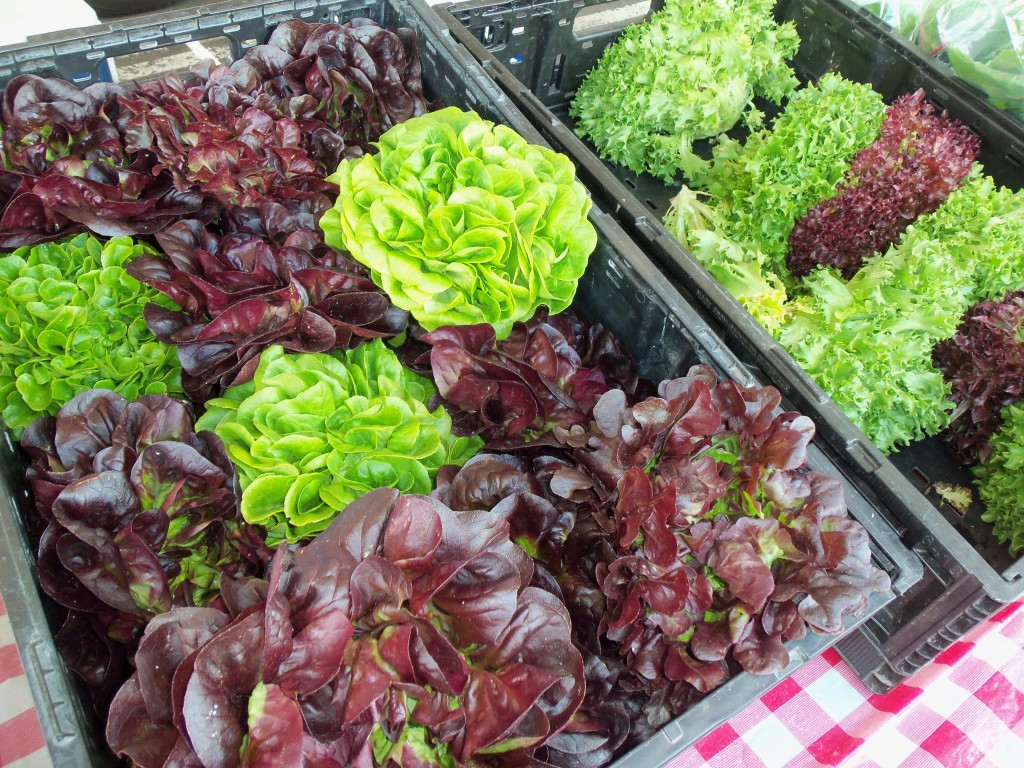 Fresh lettuce for sale at the Farmers' Market