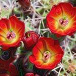 0011_inception_3a-output_cactus